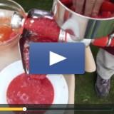 Vidéo d'une épépineuse Tre Spad